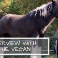 VEGAN VIBES JAPAN の meg さんにインタビューしてみた!(Part1)